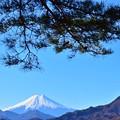 写真: 睦月富士