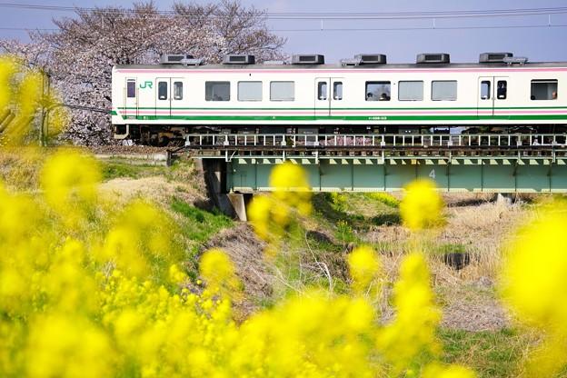 写真: 107系最後の春!?@イセコマ