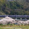 Photos: 485系「お座敷桃源郷パノラマ号」@藤野~上野原