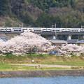 Photos: 215系「ホリデー快速ビューやまなし」@藤野~上野原