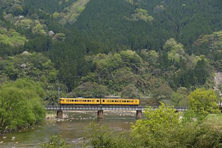 115系幸せの黄色い電車@ネウクロ2