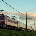 写真: 9011レ EF81-98牽引カシオペア紀行@蒲須坂~片岡