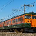 写真: 738M 115系湘南色@冬晴れのヤギシブ