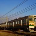 写真: 夕日を浴びて走る211系@新前橋~井野