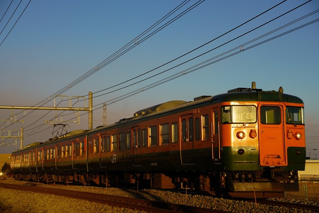 写真: 夕日を浴びて走る115系湘南色@新前橋~井野