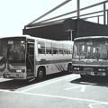 写真: まともなバスと並ぶ