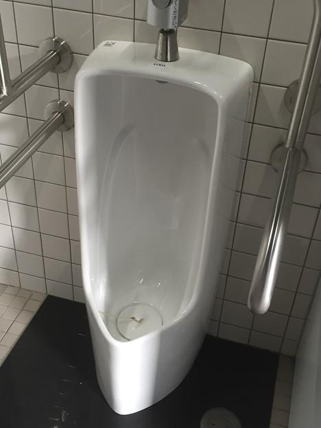 大津泊庭園のトイレの小便器