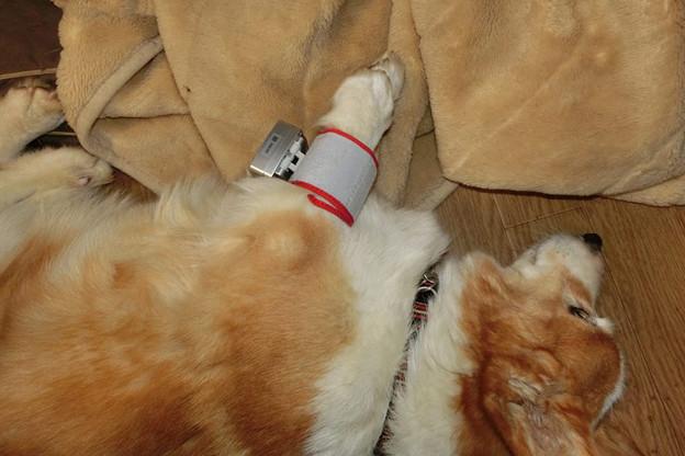 写真: 血圧測定