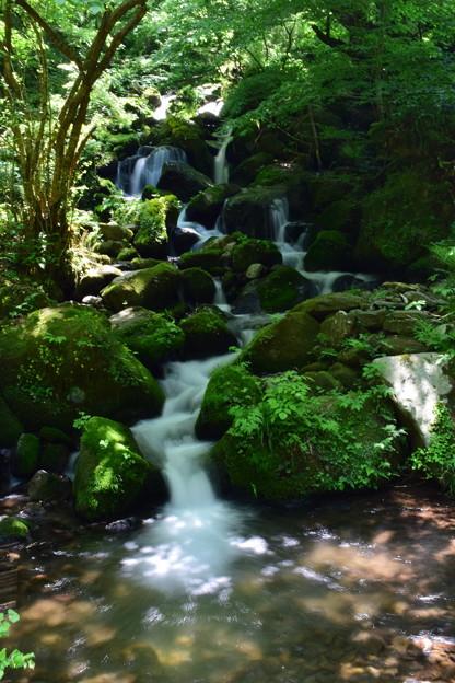 写真: 仏谷渓谷