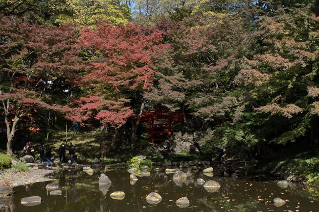 【小石川後楽園の紅葉】2