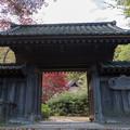 薬師池公園【旧荻野家の景色】2