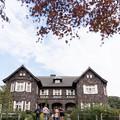 旧古河庭園【モミジと洋館】6