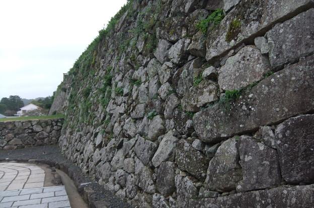 お掘りの石垣