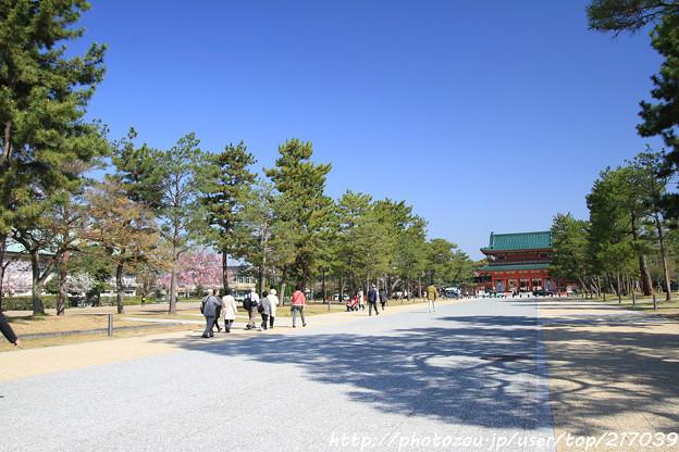 IMG_3094岡崎公園