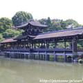 Photos: IMG_3311平安神宮・東神苑・泰平閣(橋殿)