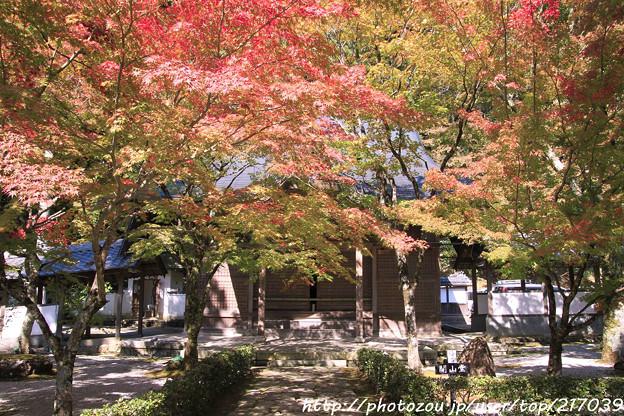 IMG_7252永源寺・いろは紅葉と開山堂