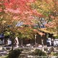 写真: IMG_7252永源寺・いろは紅葉と開山堂