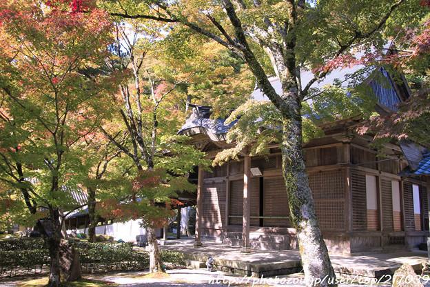 IMG_7257永源寺・いろは紅葉と開山堂