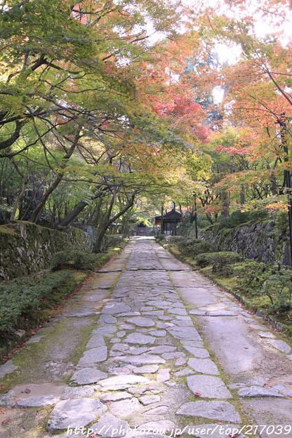 IMG_7288金剛輪寺(松尾寺)