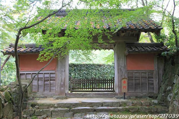 IMG_7298金剛輪寺(松尾寺)・赤門