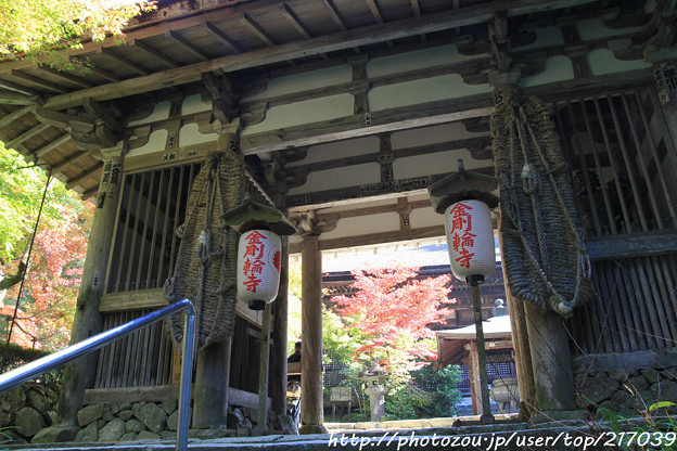 IMG_7428金剛輪寺(松尾寺)・二天門(重要文化財)