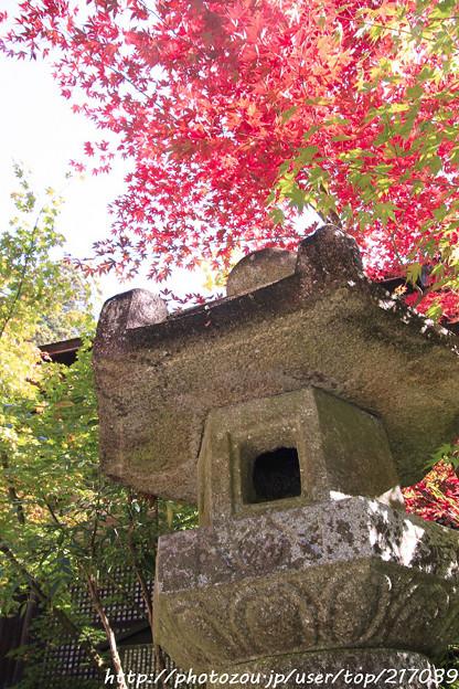 IMG_7438金剛輪寺・石灯籠といろは紅葉