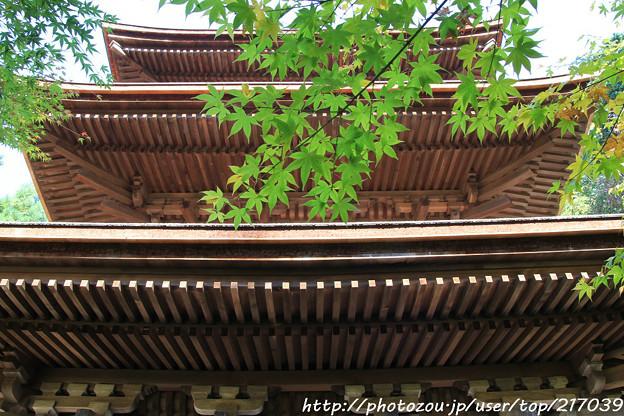 IMG_7463金剛輪寺・三重塔(重要文化財)といろは紅葉