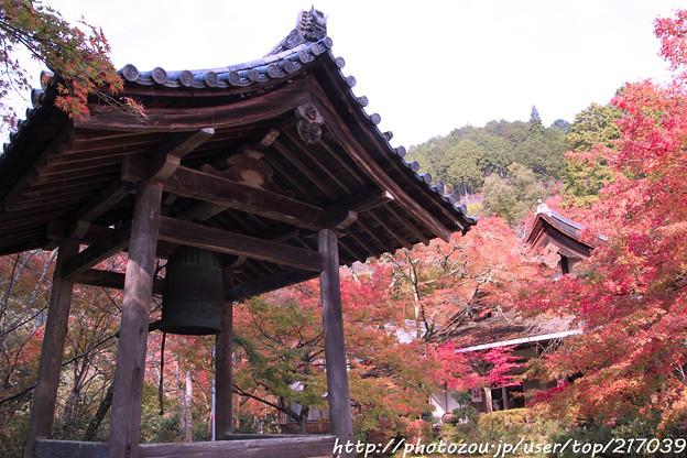 写真: IMG_7623西明寺・鐘楼といろは紅葉