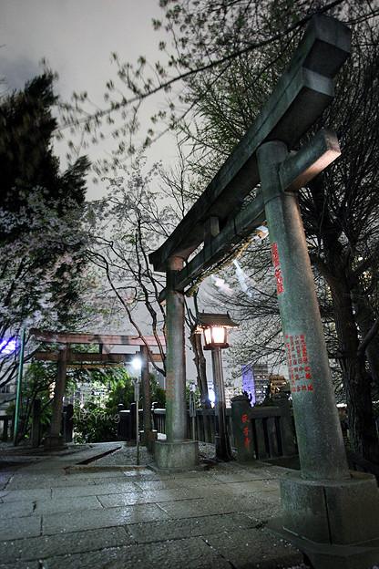 写真: 東京神社