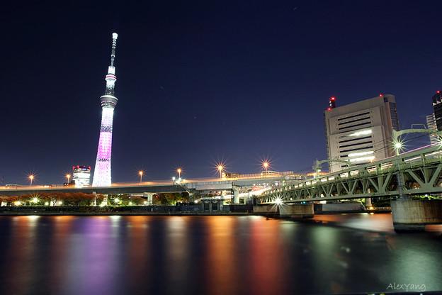 写真: 東京