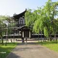 写真: 仏教美術資料研究センター IMG_0518