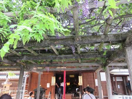 興福寺 IMG_0525