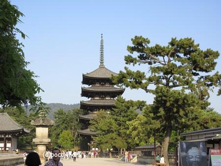 興福寺 IMG_0534