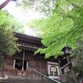 写真: 長楽寺 IMG_0676