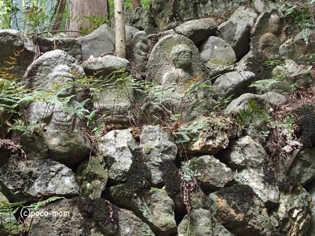 長楽寺 P5010434