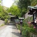Photos: 長楽寺 P5010469