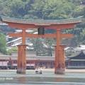 写真: 厳島神社 IMG_0949