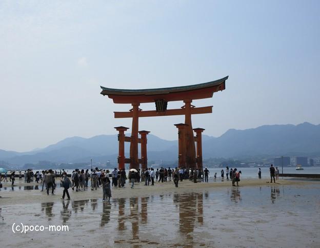 写真: 厳島神社 IMG_0964