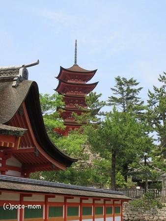厳島神社 IMG_0991