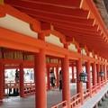 写真: 厳島神社 IMG_0999