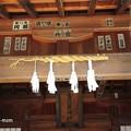 写真: 厳島神社 IMG_1033