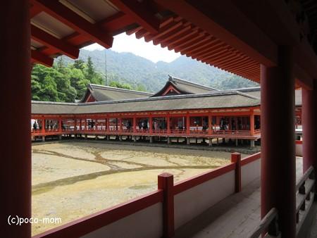 厳島神社 IMG_0988