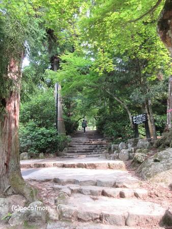 宮島 IMG_1034