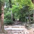 写真: 宮島 IMG_1034