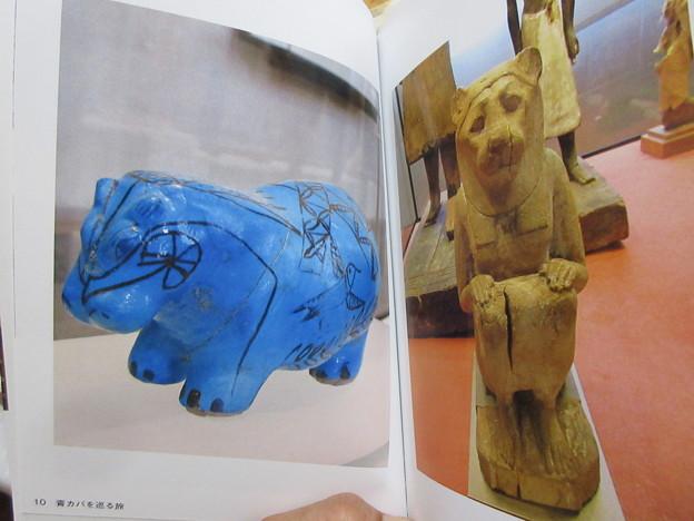 写真: 青カバ の 本 IMG_1279