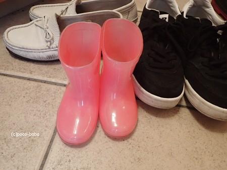 孫の長靴 P7301242