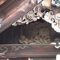 Photos: 広隆寺 P9230992