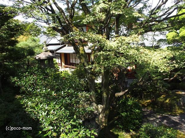 大雲院祇園閣 P9241261