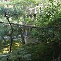 写真: 大雲院祇園閣 P9241263