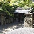 写真: 大雲院祇園閣 P9241276